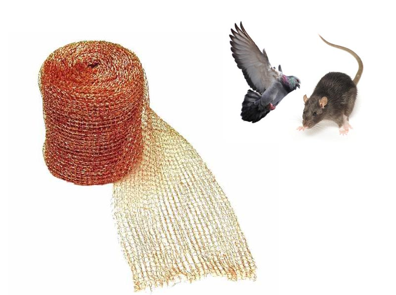 Copper Mesh for Bat  and Insect Control